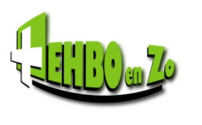 logo_ehbo en zo.jpg